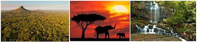 Gorongosa National Park, Sofala Province, Mozambique